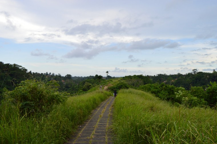 Ubud: Campuhan Ridge walk
