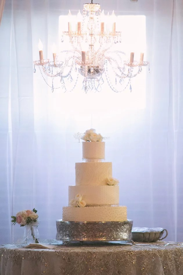 How do I preserve my wedding cake top tier    Stella   Company     See below the picture for our steps on preserving your cake   Photo by Mary  Moment Photography