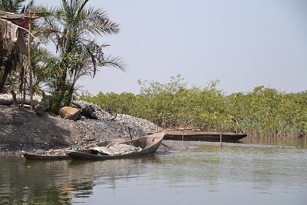 Reistip Gambia Makasuto forest