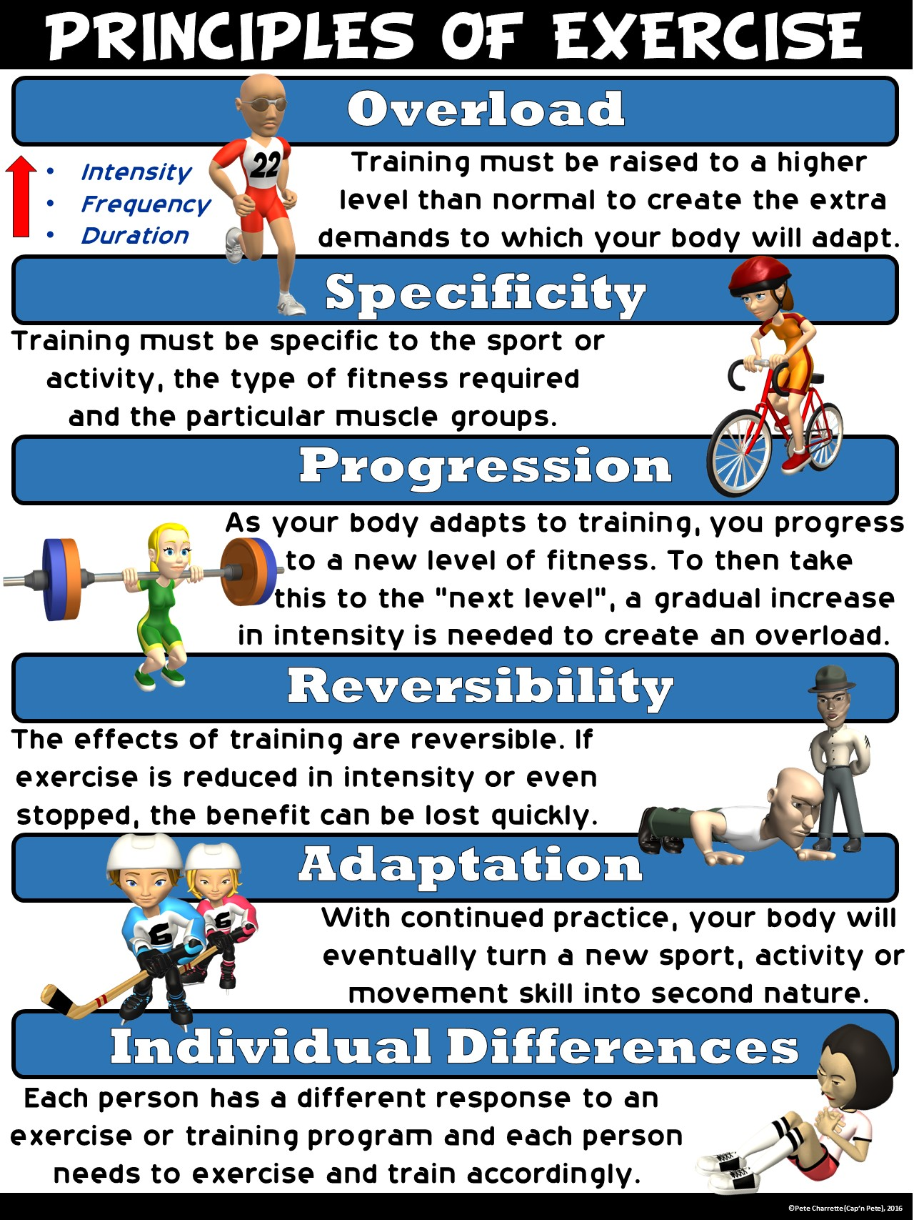 Pe Poster Principles Of Exercise
