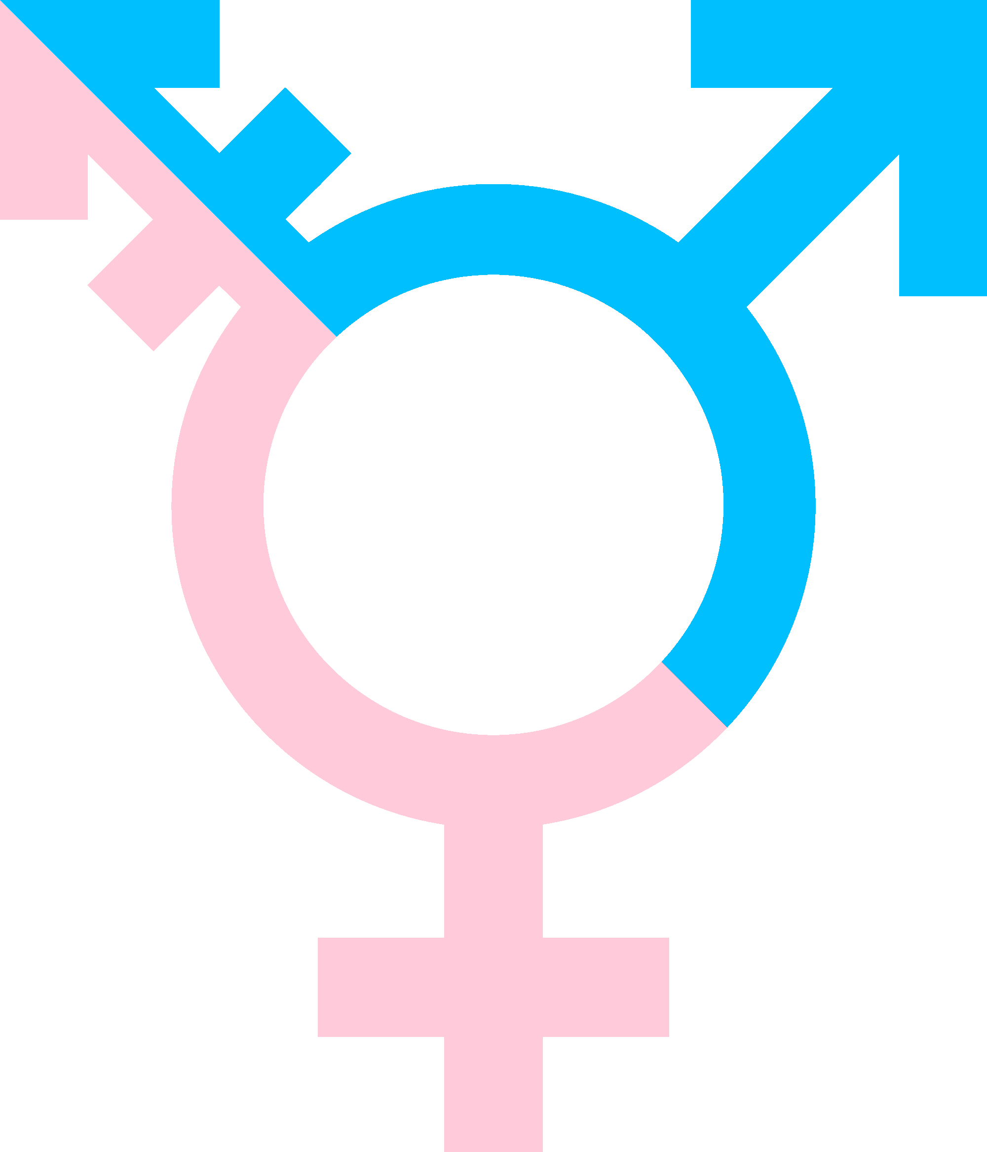 Gender Therapy