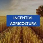 Incentivi Agricoltura 2021: una guida alle agevolazioni
