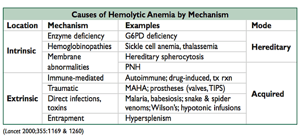 Intravascular Hemolysis Haptoglobin