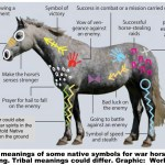 Indian Warhorse Paint