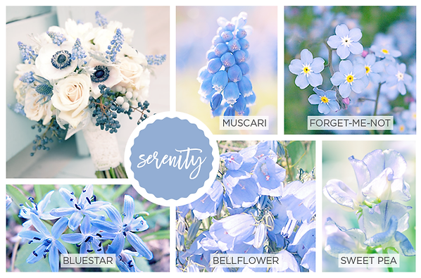Spring Flowers And Pantone Color Guide My Humble Home And Garden