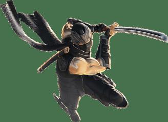 La dificultad del videojuego Ninja Gaiden