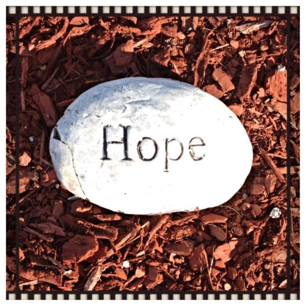 Hope is part of grief. Rock in flower bed. grief coping with grief