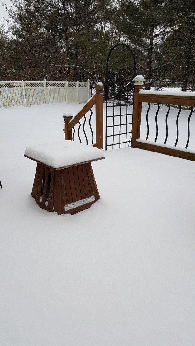 snow on the back deck
