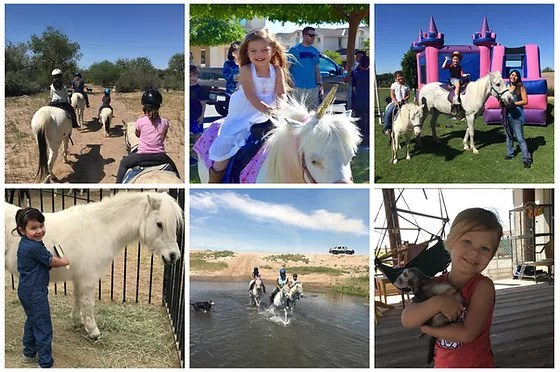 Party Ponies Yuma Birthday Trail Rides Petting Zoo Yuma Az