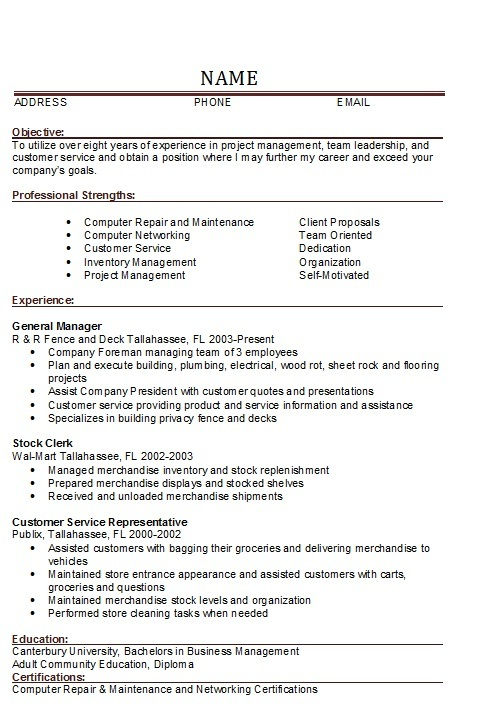 Sample Resume Of General Manager It - Template