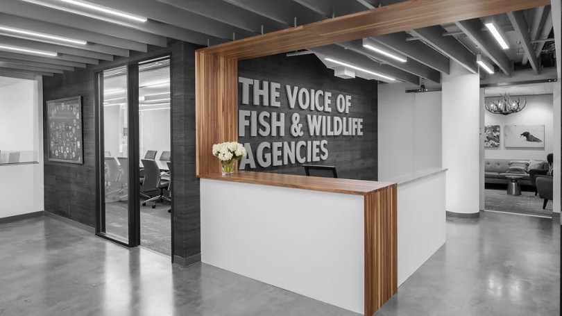 bldg   Commercial Interior Architecture The lobby at the Association for Fish and Wildlife Agencies  Butcher block   concrete and