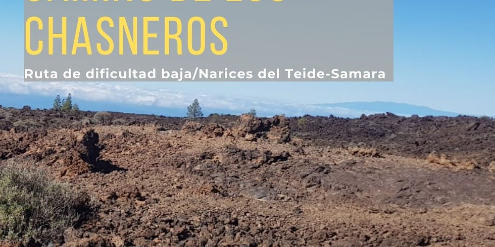 """Ruta para todos los públicos. Proyecto de promoción del Patrimonio de Guía de Isora: Ruta """"Camino de los Chasneros"""""""