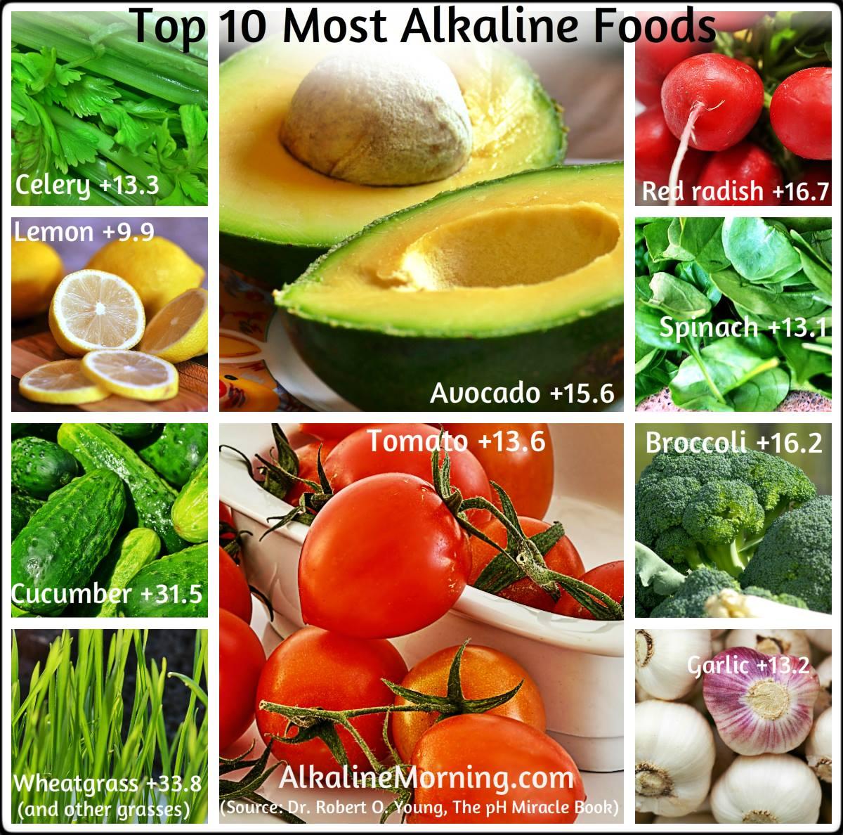 Acid Alkaline Food List