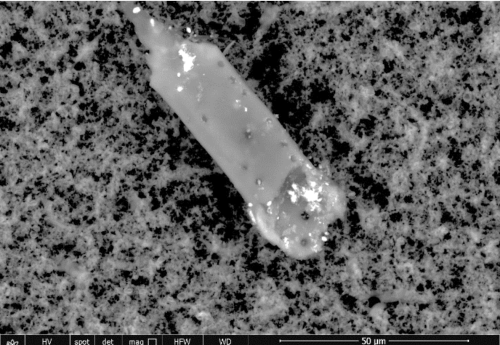 "Figure 11 shows sharp micron debris of 20 um in length identified in the Pfizer so-called ""vaccine"" containing Carbon, Oxygen Chromium, Sulphur, Aluminum, Chloride, Nitrogen."