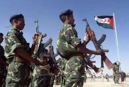 Guerre Au Mali LAFP Sattire Les Foudres Du Polisario