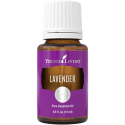 Image result for young living lavender