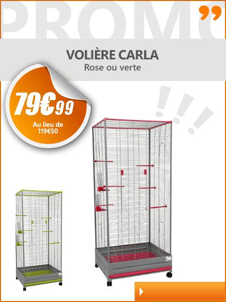 Cage Oiseau Graine Oiseau Accessoire Et Volire Pour Oiseau