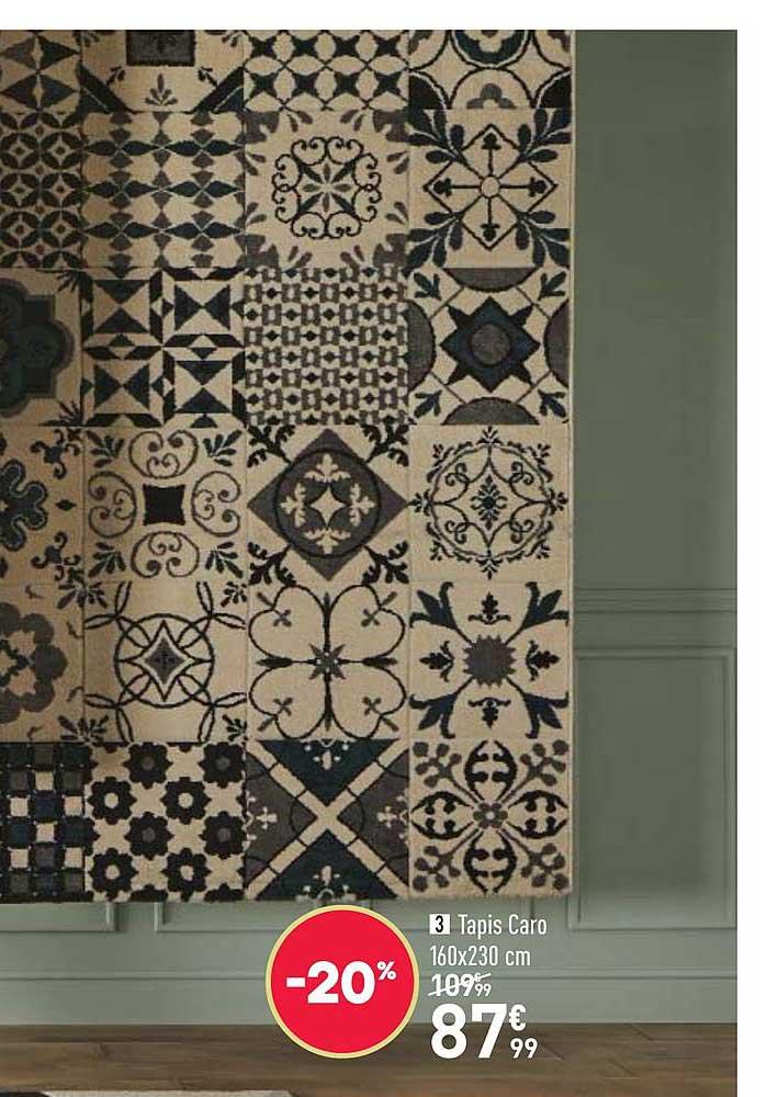 offre tapis caro 160x230 cm chez conforama