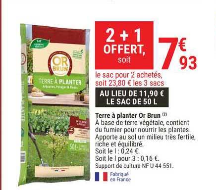 planter or brun 2 1 offert chez gamm vert