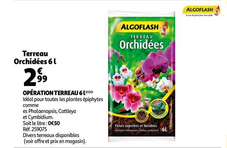 algoflash 2 1 offert chez eleclerc brico