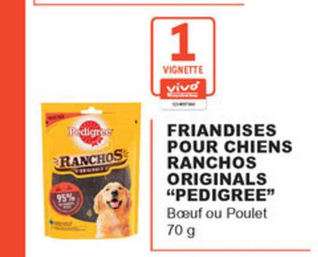 offre croquettes pour mini chiens