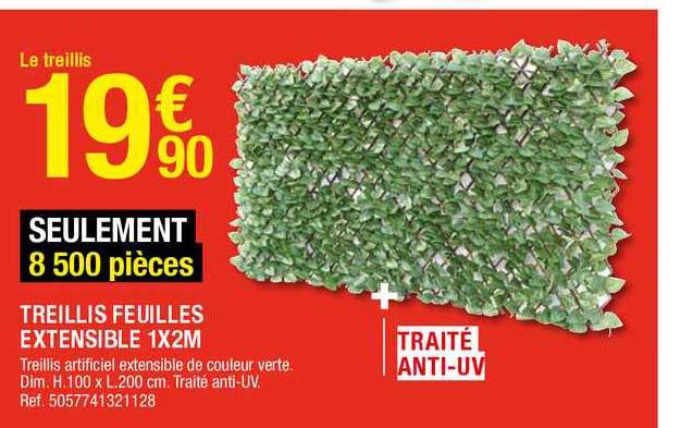 Offre Treillis Feuilles Extensible 1 X 2 M Chez Brico Depot