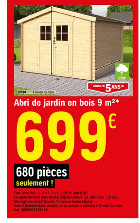 Offre Abri De Jardin En Bois 9 M2 Chez Brico Depot