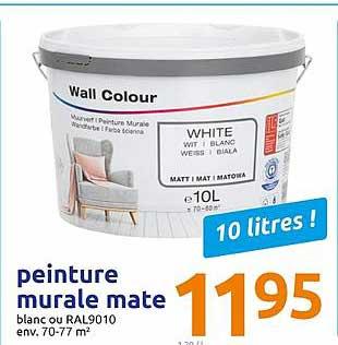 Offre Peinture Murale Mate Chez Action