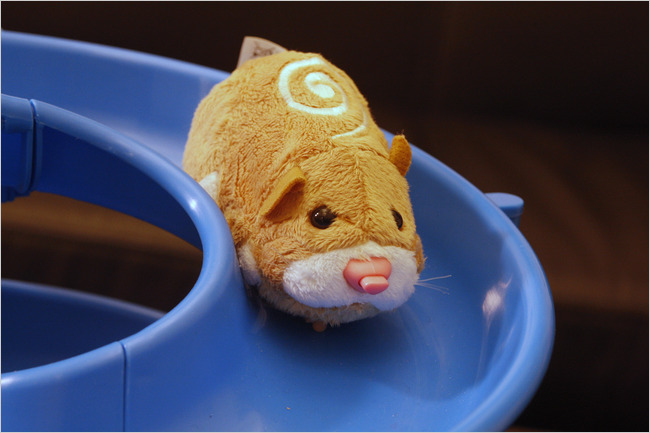 Zhu Zhu Pets Are The Seasons Hottest Toy The New York Times