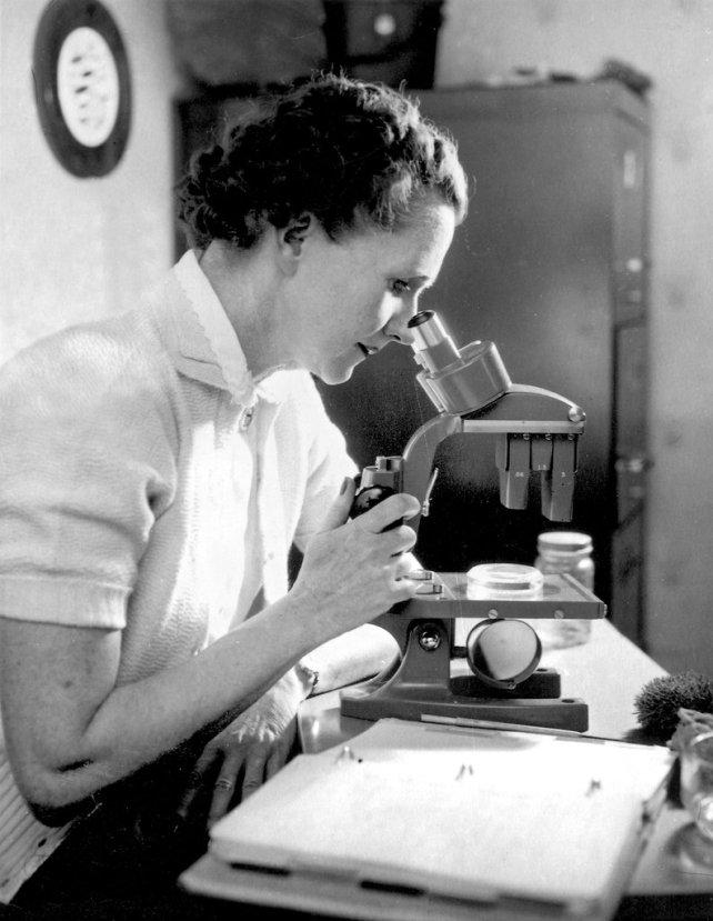 Rachel Carson, 1951.