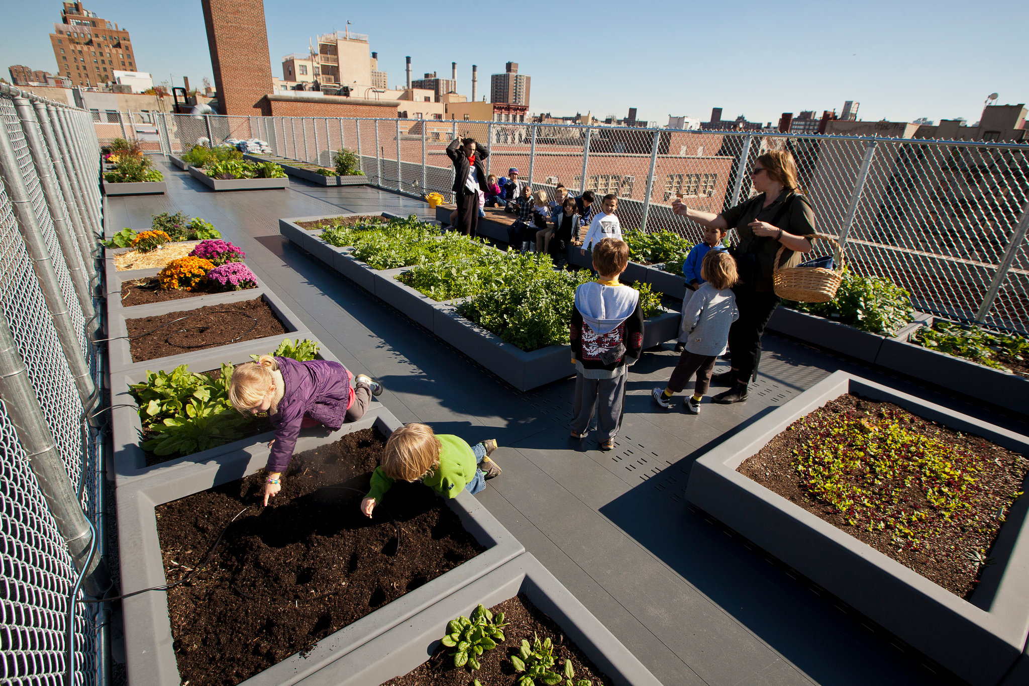 Schools Add In House Farms As Teaching Tools In New York
