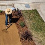 In Drought Ridden California The Classic Lawn Loses Ground The New York Times