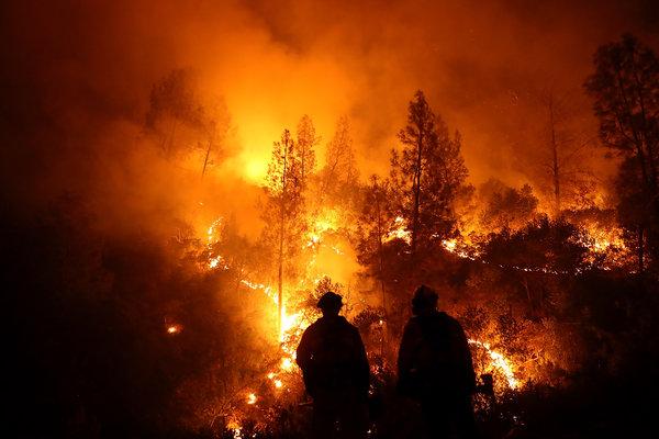 Natural Destruction Los Angeles
