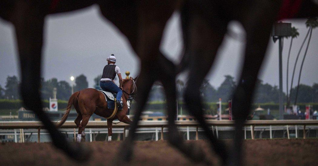 Why So Many Horses Have Died At Santa Anita The New York
