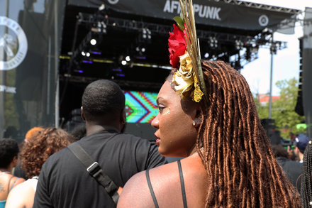 Afropunk and 8 Other Outdoor Concerts to Put on the Calendar