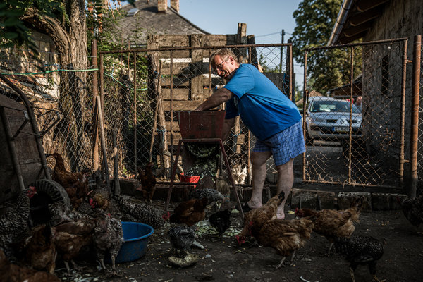 """""""If Angyan can't do anything, what can I do?"""" said Istvan Teichel, a farmer near Mr. Orban's hometown."""