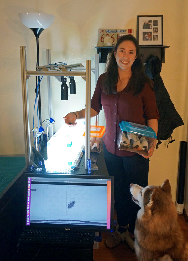 Glenna Clifton with her cockroaches and her at-home lab assistant, Loona.