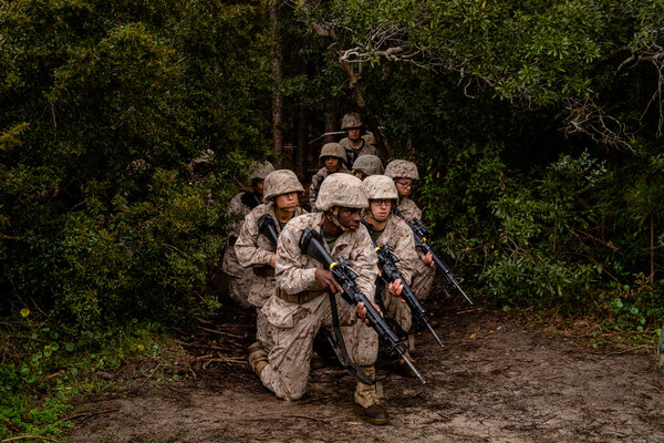 Marine recruits in February at Parris Island, S.C. About 43 percent of the 1.3 million men and women on active duty are people of color, but that diversity is not reflected in senior leadership of the armed forces.