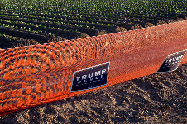 Signs calling for the re-election of the Trump-Pence ticket on farmland in Yuma, Ariz.
