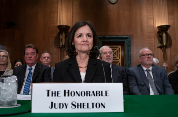 Judy Shelton appeared before the Senate Banking Committee for a confirmation hearing in February. Herunconventional views have made her a hot-button candidate for the job.
