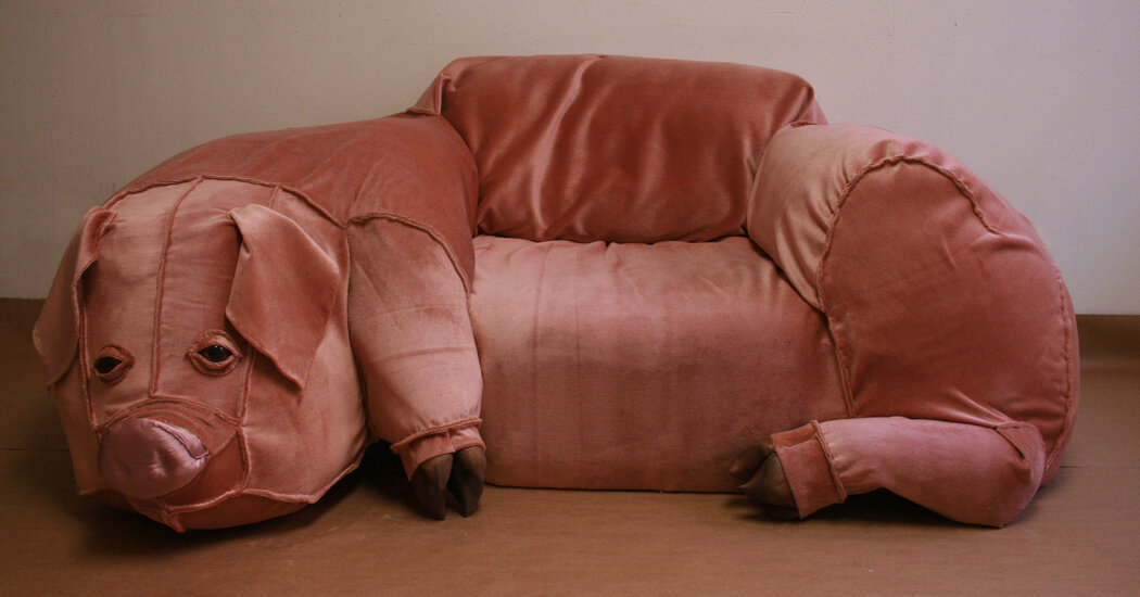 Pig Couch on Craigslist: The Full Story
