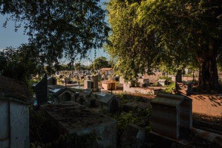 El cementerio donde está sepultado Carmelo Bislick, un locutor de radio que criticó al gobierno de Venezuela