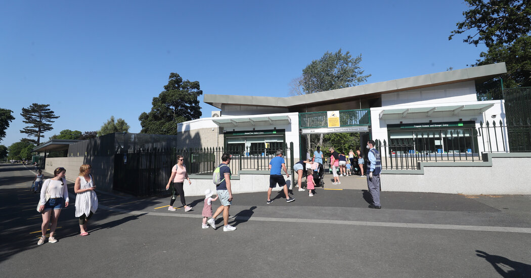 Dublin Zoo Pleaded for Pandemic Help. Supporters Gave .2 Million in Hours.