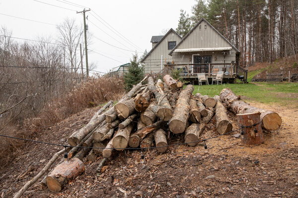 """""""That is now my future firewood pile,"""" Mr. DeVito said of the trees that were felled as part of an excavation project on his property."""