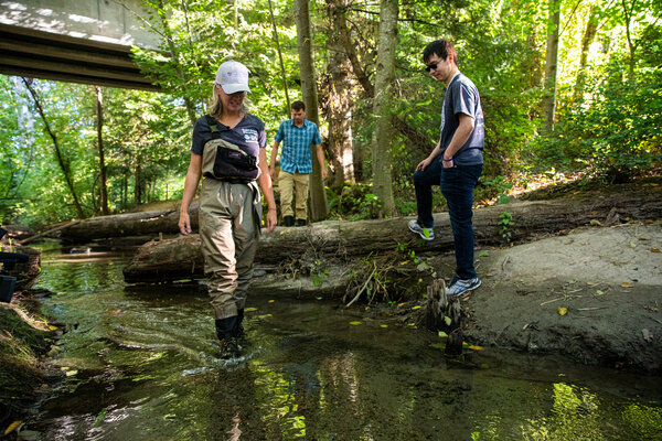 From left, Jenifer McIntyre,Edward P. Kolodziej and Zhenyu Tian at Longfellow Creek in Seattle.