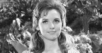 Dawn Wells, Mary Ann on 'Gilligan's Island,' Dies at 82