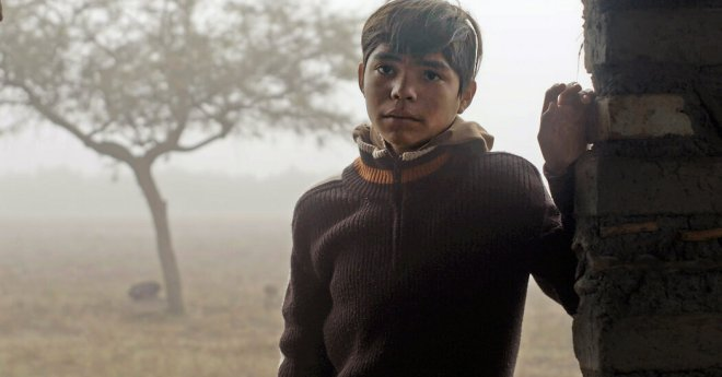 'Identifying Features' Review: Lost in Migration