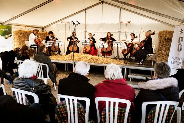 Una audiencia de 35 humanos también asistió a dos conciertos que dieron los estudiantes de la escuela, el 25 de abril.