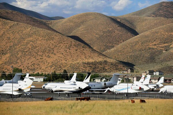 Private and corporate jets parked at an airport in Hailey, Idaho. President Biden has dismissed critics of his tax plan by noting it would not deprive any executives of private jet travel.