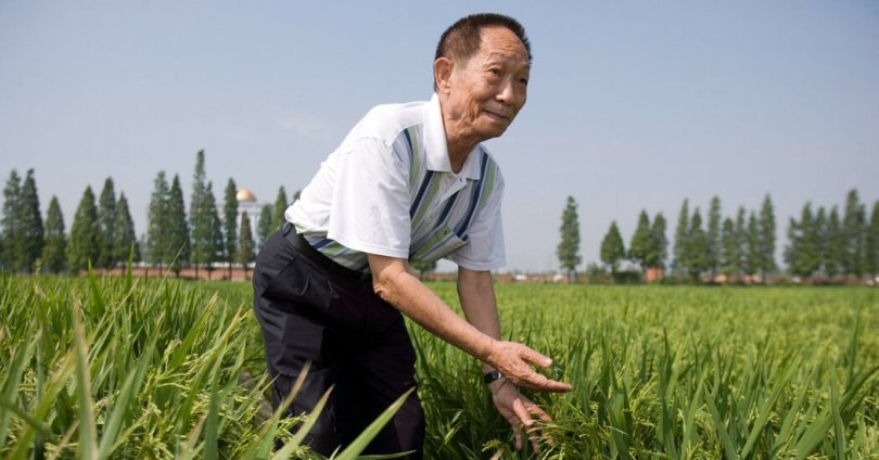 Yuan Longping, Plant Scientist Who Helped Curb Famine, Dies at 90